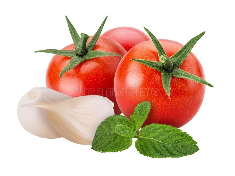 Nya grönsaker röd tomat, vitlök, mintkaramell royaltyfri foto