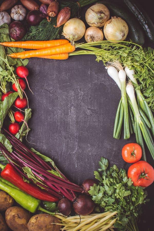 Nya gr?nsaker p? m?rk bakgrund Strikt vegetarianr?kost Modell f?r meny eller recept arkivbild