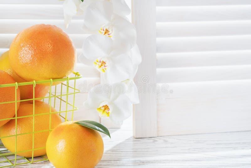 Nya grapefrukter och vit orkidé på den vita trätabellen mitt emot rullgardinerna Med kopiera utrymme royaltyfria foton