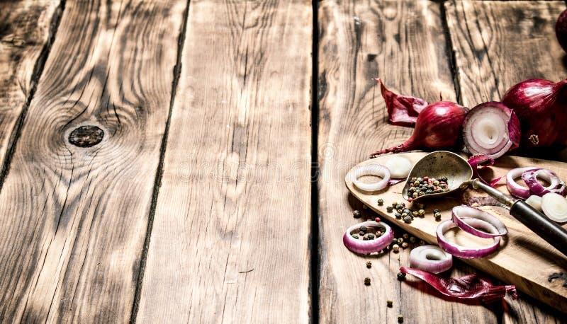 Nya högg av lök och kryddor royaltyfria foton