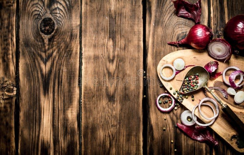 Nya högg av lök och kryddor royaltyfri foto