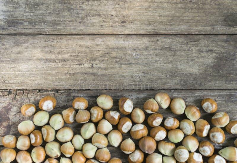 Nya hasselnötter på trätabellen med kopieringsutrymme arkivfoto