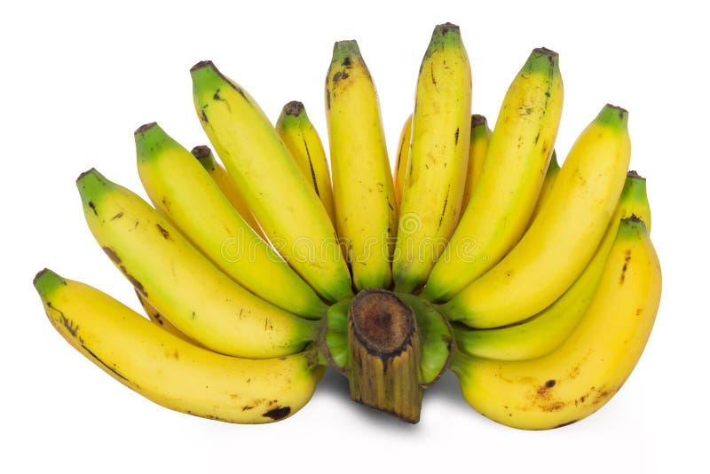 Nya hela bananer bakgrund isolerad white arkivbild
