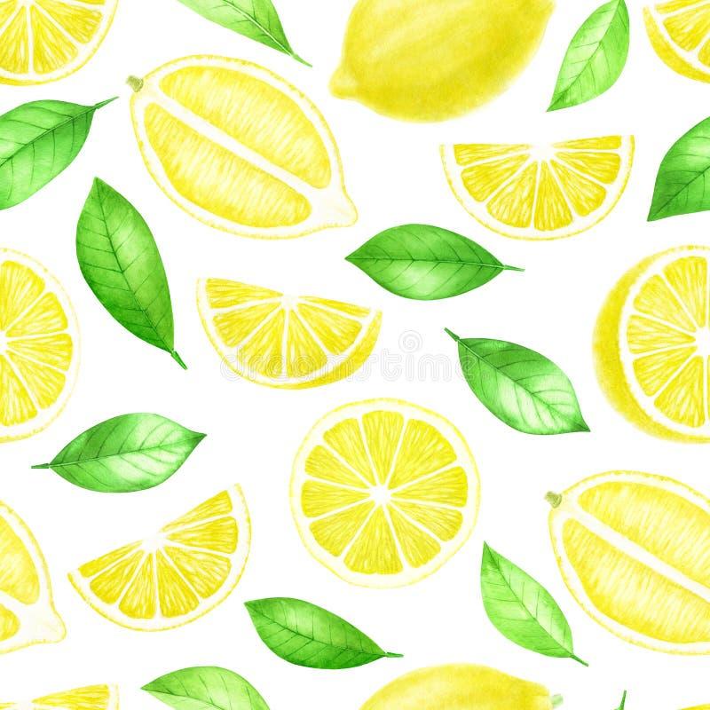 Nya hela citronfrukter och skivad sömlös modell Citrus med sidor som isoleras på vit bakgrund Vattenfärghand vektor illustrationer