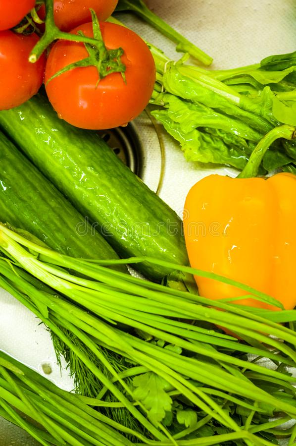 nya hela grönsaker - tomater, salladslökar, gurkor, gul spansk peppar, persilja och grönsallat, slut upp arkivbild