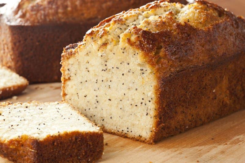 Nya hemlagade Poppy Seed Bread royaltyfria foton