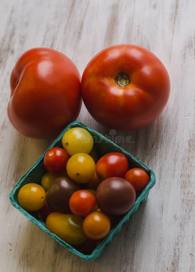 Nya i naturlig storlek och körsbärsröda tomater från Farmer's marknadsför arkivfoton