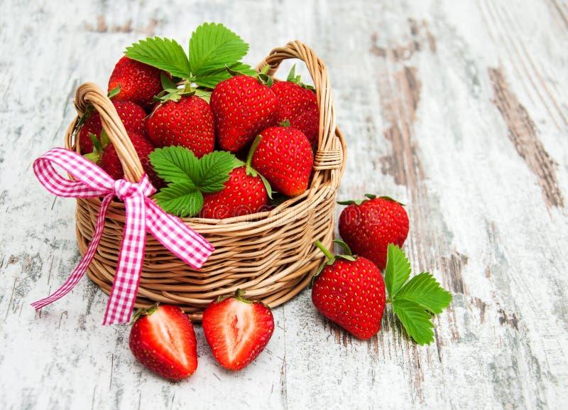 nya jordgubbar för korg arkivfoto