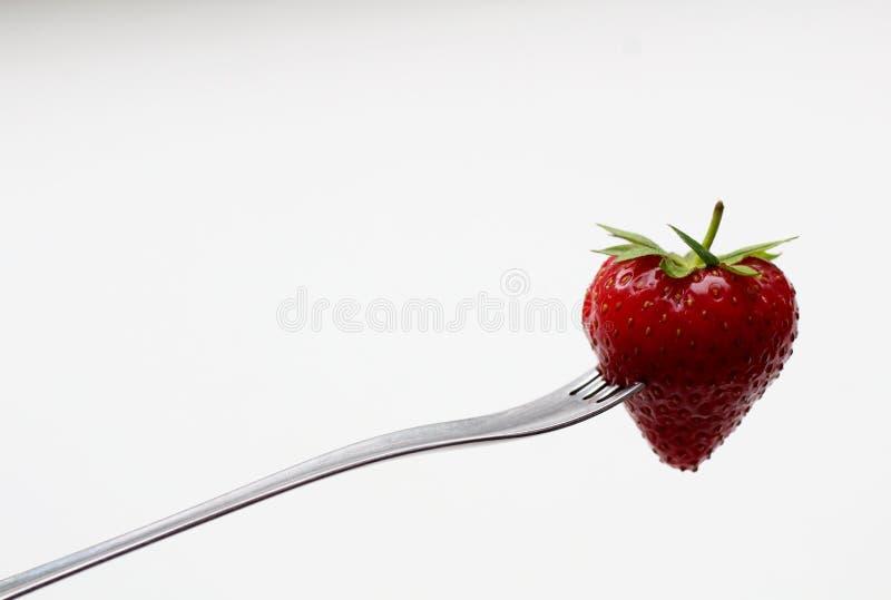Nya jordgubbar på en gaffel på en vit bakgrund arkivfoton