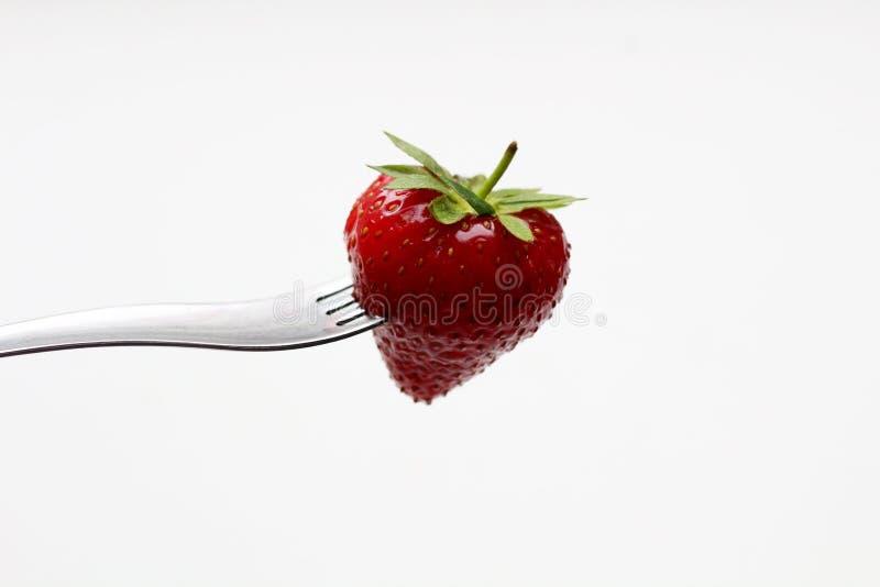 Nya jordgubbar på en gaffel på en vit bakgrund royaltyfria foton