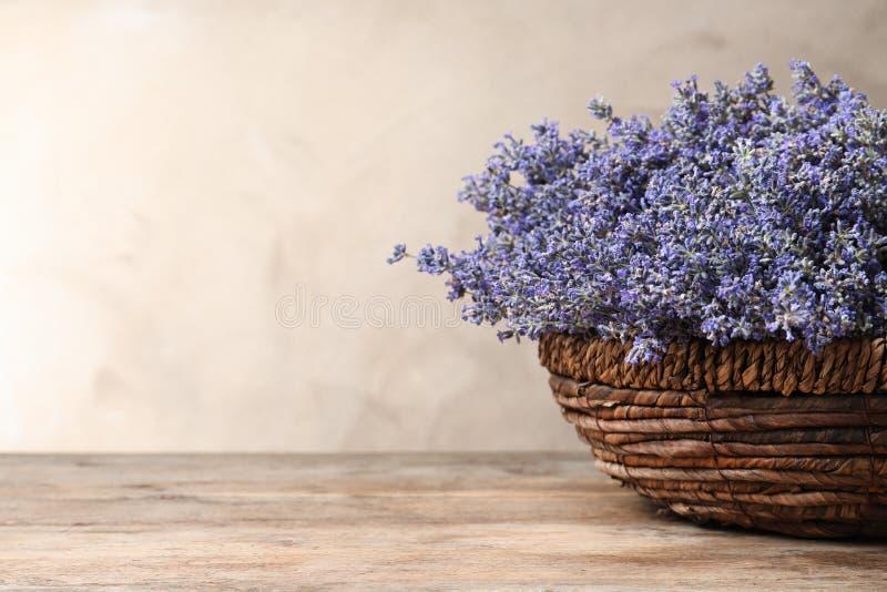 Nya lavendelblommor i korg på trätabellen mot beige bakgrund royaltyfri bild
