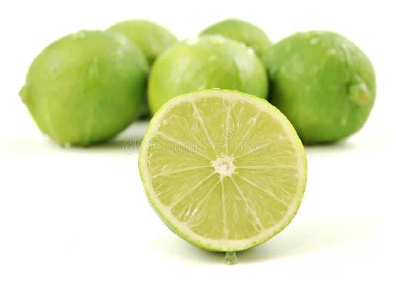 nya limefrukter fotografering för bildbyråer