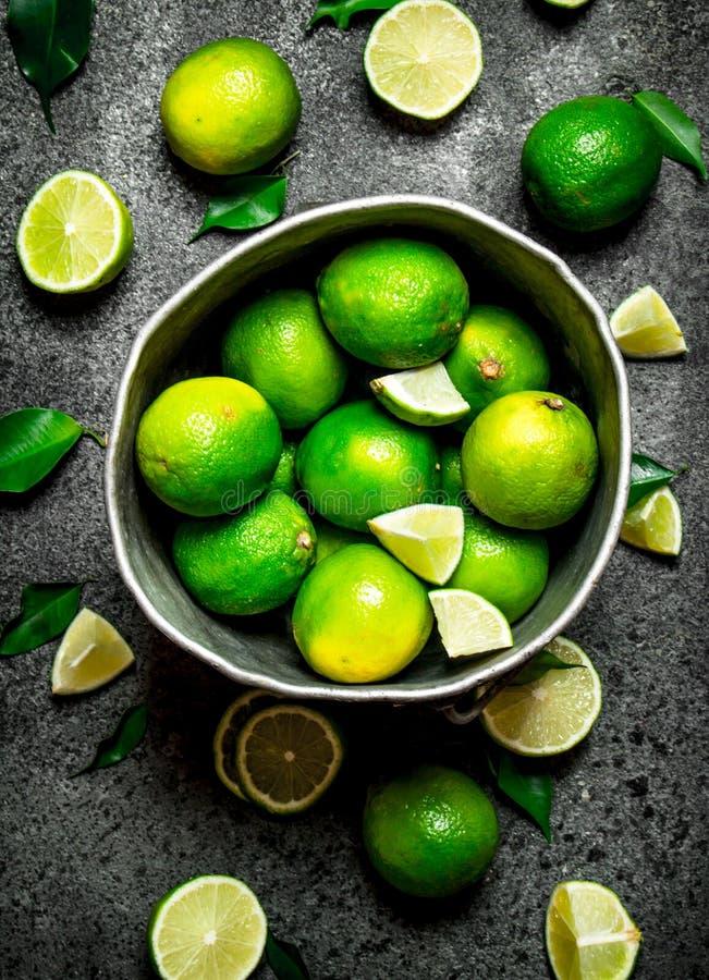 Nya limefrukter i den gamla hinken fotografering för bildbyråer