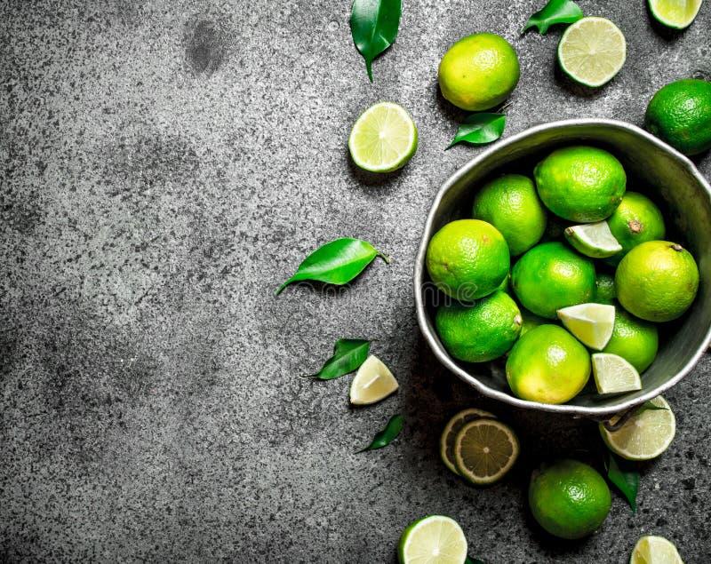Nya limefrukter i den gamla hinken royaltyfria foton
