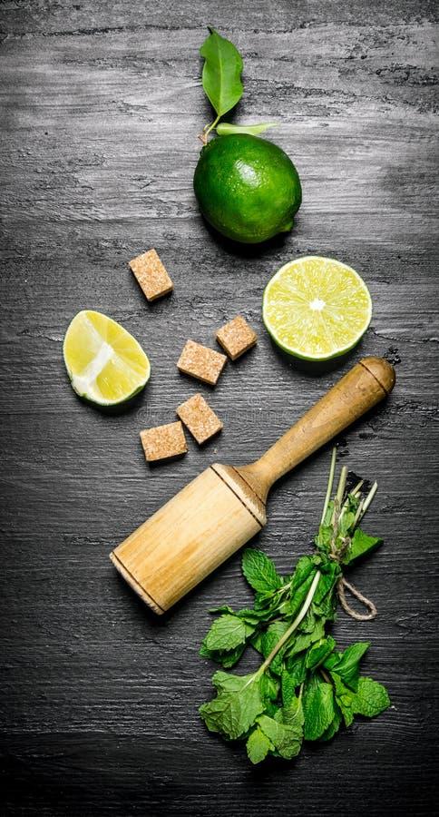 Nya limefrukter i en kastrull med skivor och royaltyfri foto