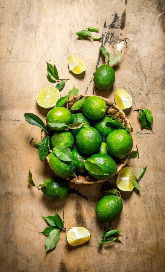 Nya limefrukter med sidor i korgen royaltyfria foton