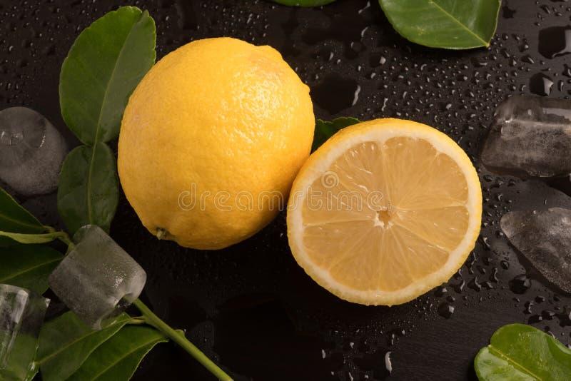 Nya limefrukter med sidor och iskuber på den våta bakgrunden royaltyfri fotografi