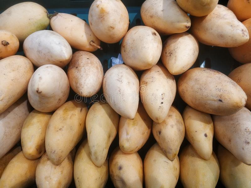 Nya mango från bästa sikt arkivbilder