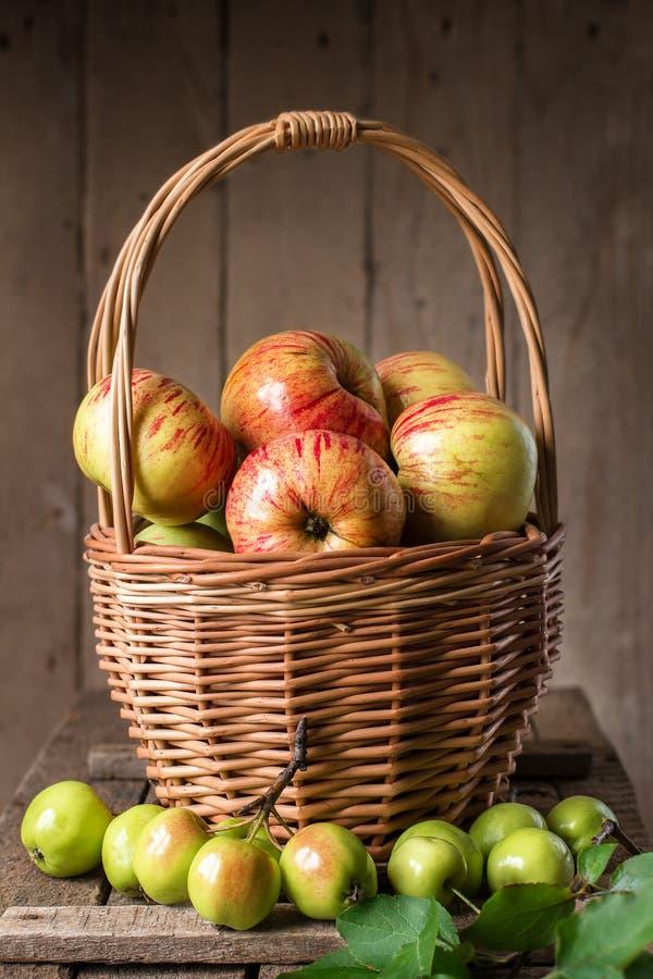 Nya mogna äpplen i korg på den lantliga tabellen royaltyfri fotografi