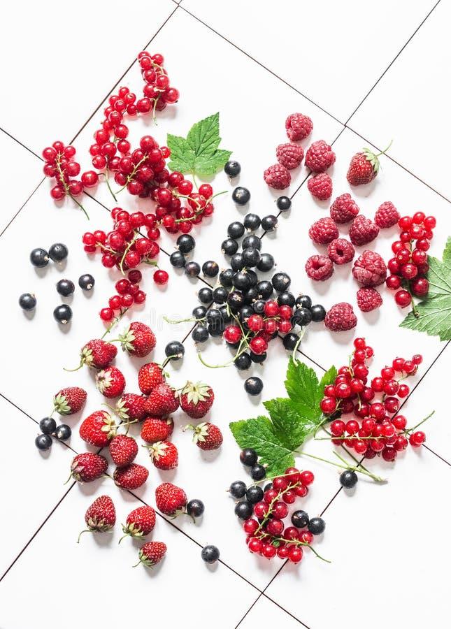 Nya mogna bär - röd och svart vinbär för jordgubbe, hallon på en ljus bakgrund, bästa sikt arkivfoto