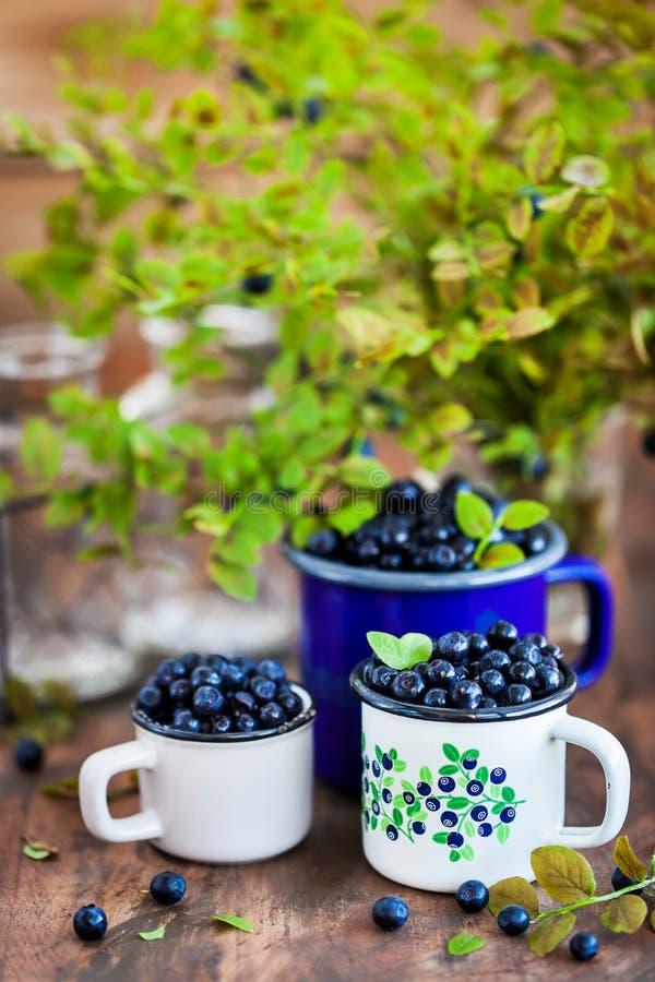 Nya mogna bluberriesblåbär i emalj rånar royaltyfri foto