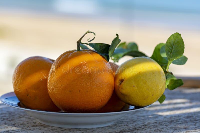 Nya mogna citrusfrukter, apelsiner och citroner med sidor som tj?nas som p? terrass med havssikt arkivfoton