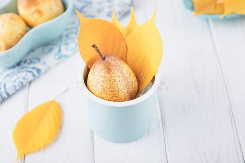 Nya mogna päron och gula höstsidor på en vit bakgrund kopiera avstånd royaltyfri fotografi