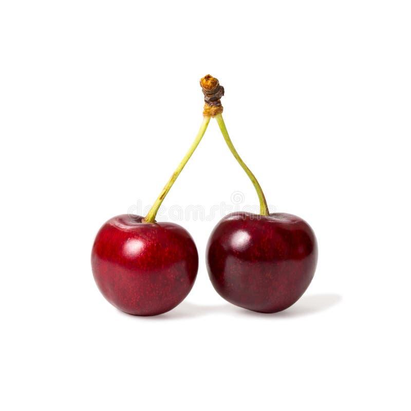 Nya mogna röda körsbärsröda bär royaltyfri bild