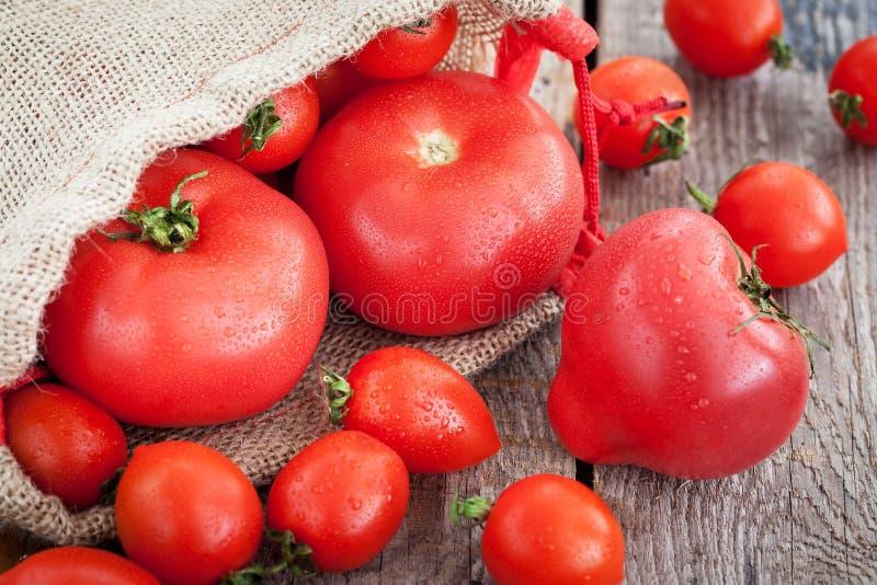 Nya mogna tomater på trätabellen royaltyfri fotografi