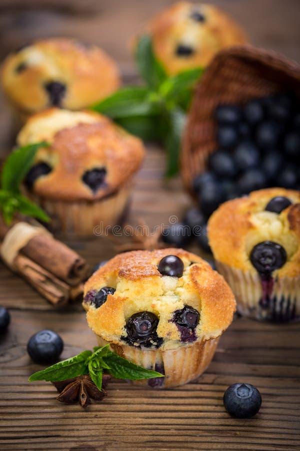 nya muffiner royaltyfri fotografi