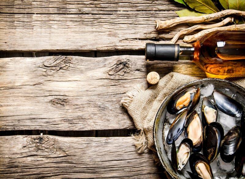 Nya musslor i en panna med vinet royaltyfri bild