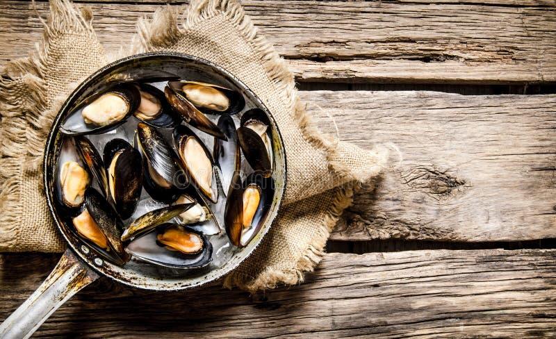 Nya musslor i en panna på det gamla tyget arkivbild