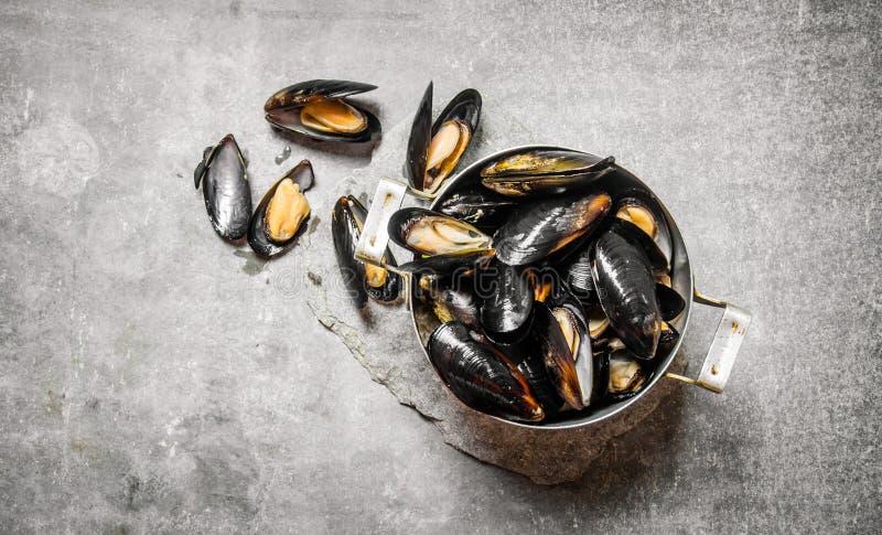 Nya musslor i pannan På stentabellen royaltyfri fotografi