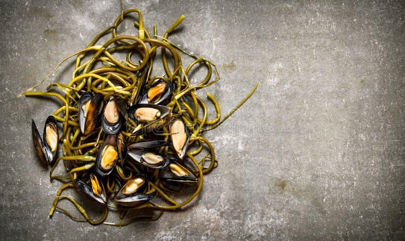 Nya musslor med lös vitlök På stentabellen arkivfoton