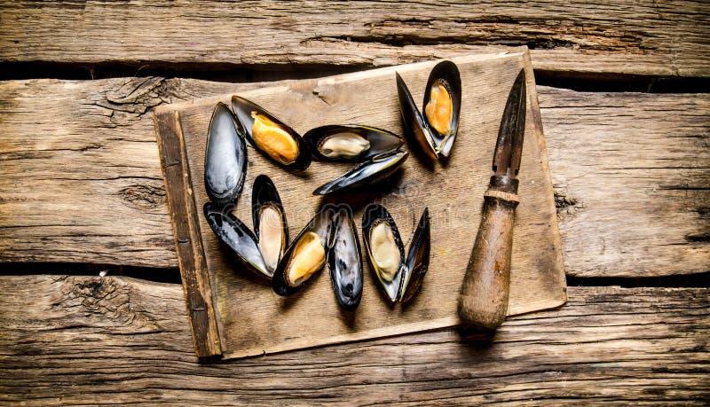 Nya musslor på ett träbräde med kniven royaltyfri foto