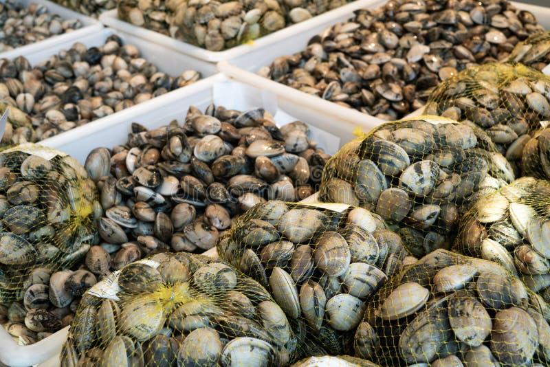 Nya musslor på till salu spjällådor royaltyfria bilder