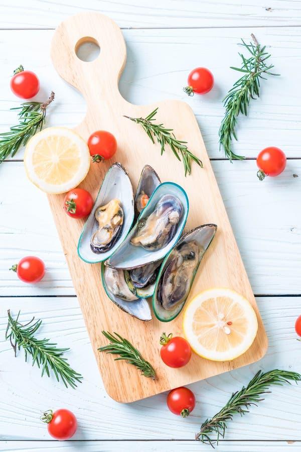 nya musslor på träbräde royaltyfria bilder