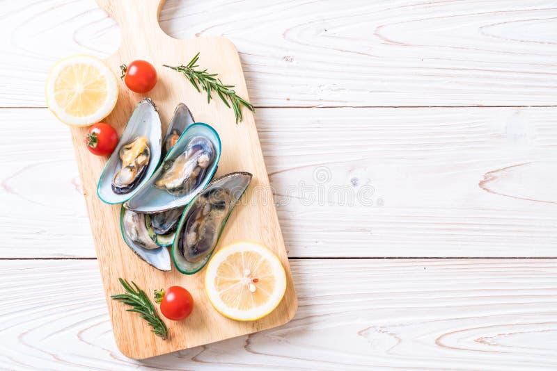 nya musslor på träbräde royaltyfri fotografi