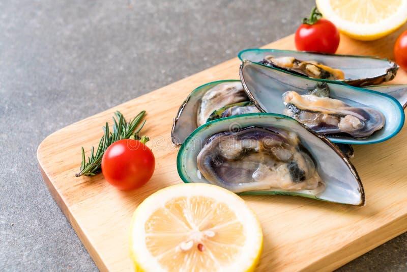 nya musslor på träbräde arkivfoton