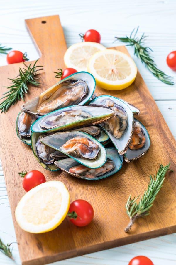 nya musslor på träbräde royaltyfri bild
