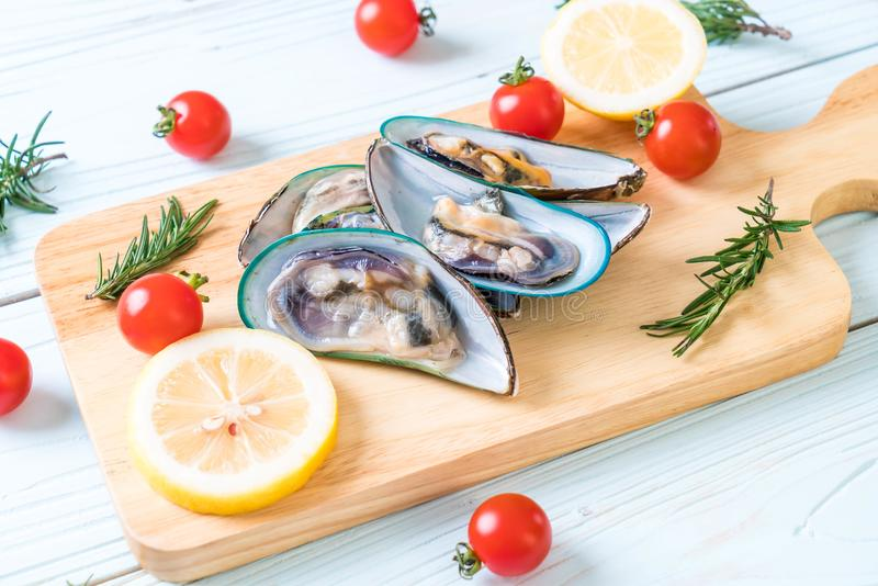 nya musslor på träbräde royaltyfria foton