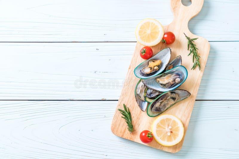 nya musslor på träbräde royaltyfri foto