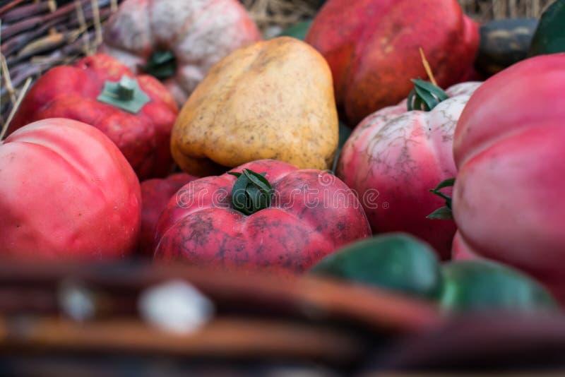 Nya och mogna hemlagade bulgariska söta för apelsin, röda och gröna och rosa tomater för peppar, för guling, royaltyfri bild