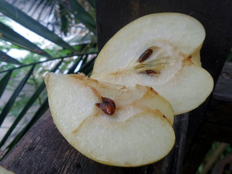 Nya och söta saftiga kinesiska päron för SliceÄ  royaltyfria bilder