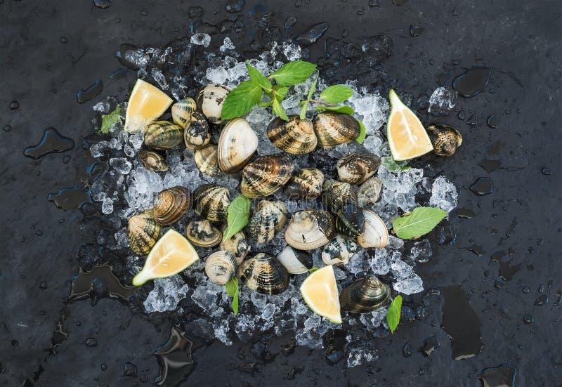 Nya okokta musslor med citronen, örter och kryddor på kanstött is över mörker kritiserar stenbakgrunden royaltyfri bild