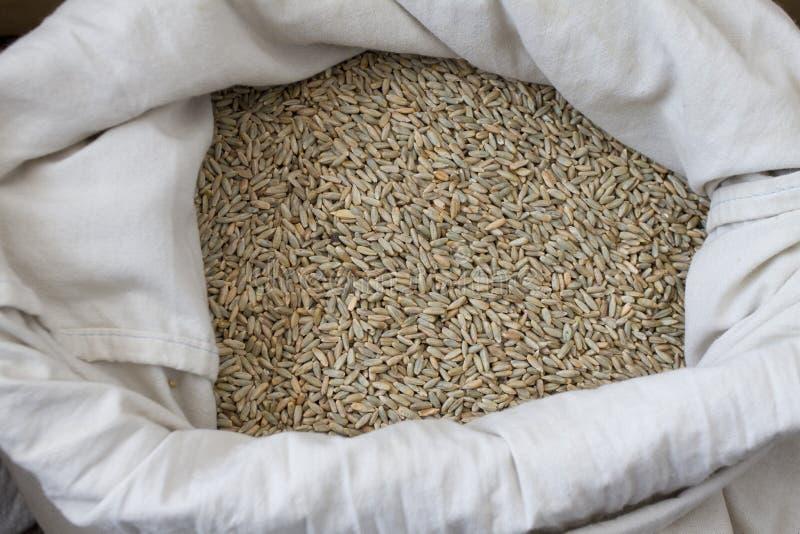 Nya organiska Einkorn vetekorn i den vita säcken, bästa sikt av sund mat fotografering för bildbyråer