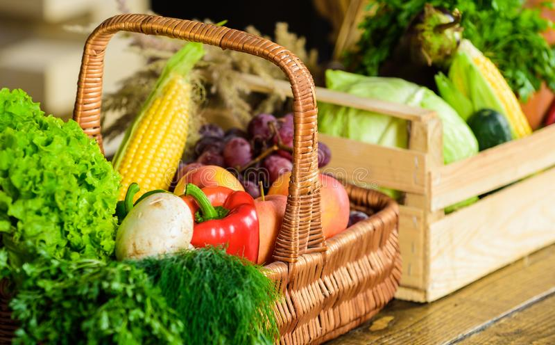 Nya organiska grönsaker i vide- korg och träask Nedgångskördbegrepp Grönsaker från nära övre för trädgård eller för lantgård arkivbild