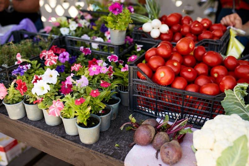 Nya organiska grönsaker och frukter på försäljning på den lokala bondesommaren marknadsför utomhus holdingen för nya händer för m royaltyfria bilder