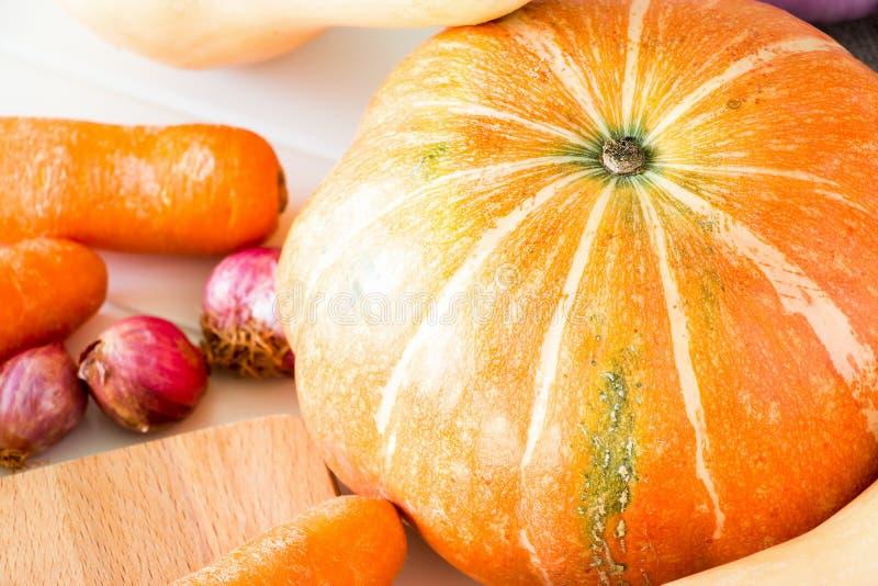 Nya organiska grönsaker pumpa, morot, lök och butternut s royaltyfri foto