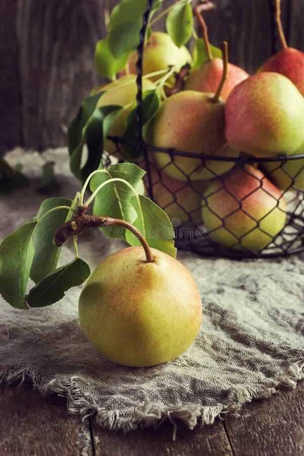 Nya organiska Pears royaltyfria foton